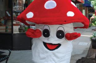 Fun Gus, the Mushroom Festival mascot.