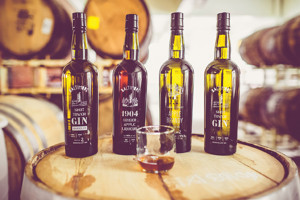 The Whiskey Company's products include Shot Tower gin and 1904, a sweet brandy.