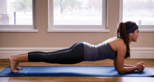 Beautiful Young Woman Performing Perfect Plank in Yoga