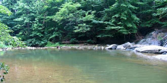 Day Trippin': A Secret Swimming Hole