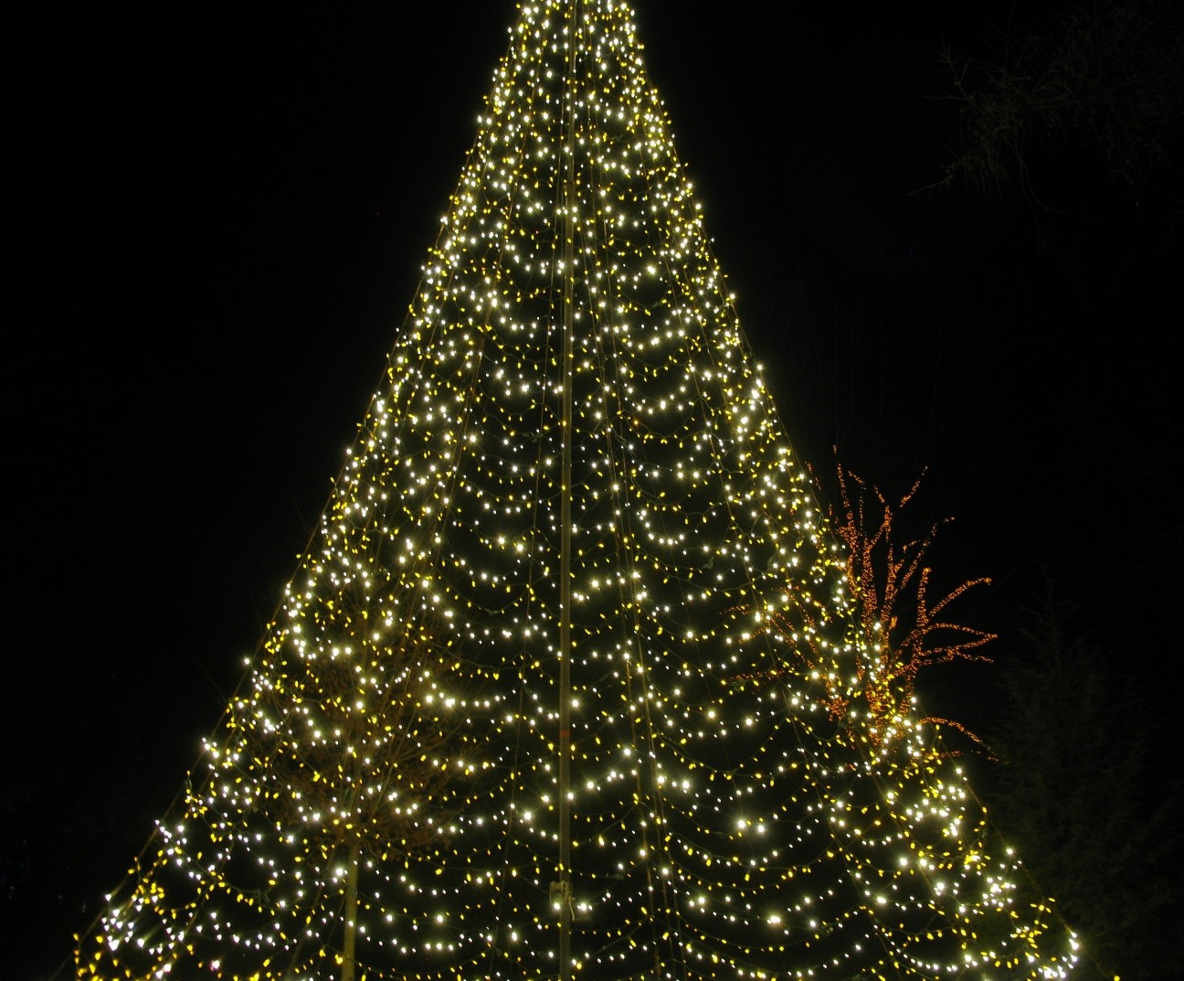Daytrippin\': A Longwood Christmas – Baltimore Style