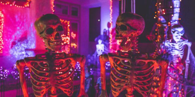 Fall fun and Halloween happenings
