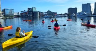 Get Out and About On the Water with These 4 Activities at the Inner Harbor